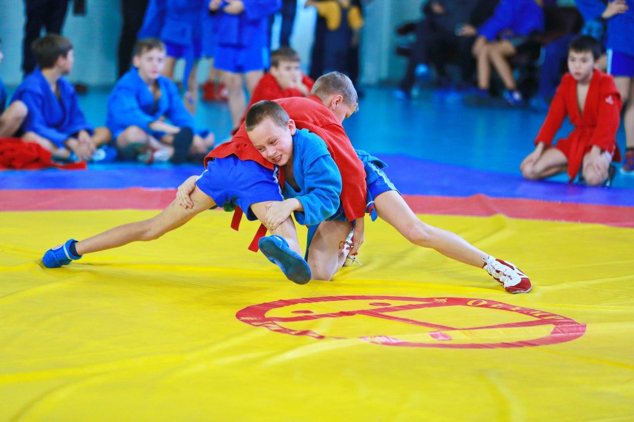 самбо спорт фото